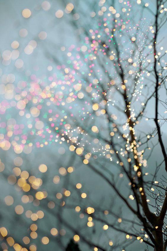kolorowe światełka na konarach drzew girlandy świąteczne